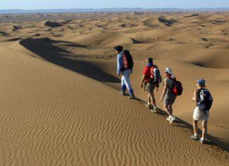 Organiser un trek dans le désert marocain