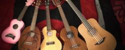 Guitare folk et ses différentes déclinaisons